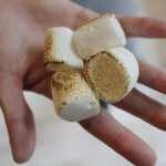 Honesty Pants - Marshmallows