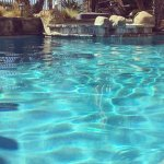 My Life in the Swimming Pool
